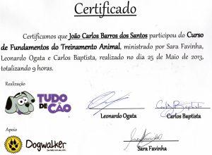 Certificado de adestramento de cães curso Fundamentos do treinamento animal tudo de cão