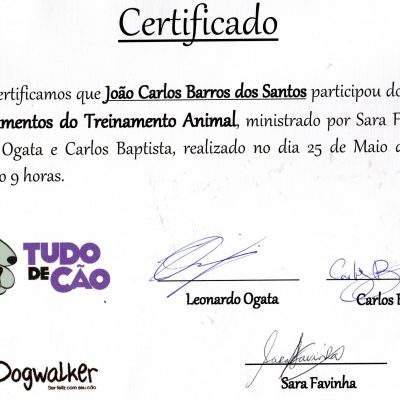 Certificado  Curso Fundamentos de Treinamento Animal