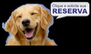 reserva hotel para cachorro