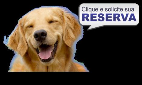 reserva lar permanente cachorros sp
