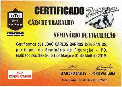 Certificado Seminário Figuação no Adestramento de cães